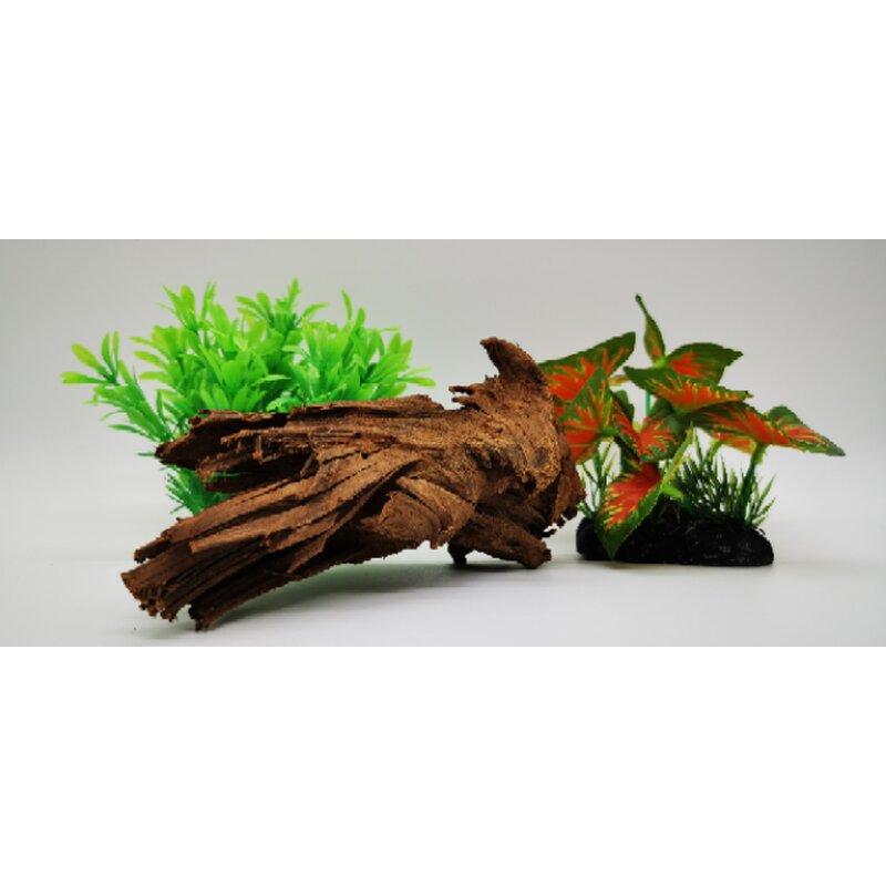 Mangrovenwurzel bis 20 cm, natur